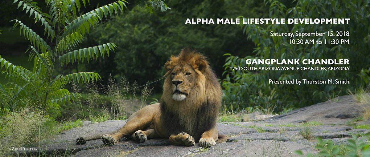 alpha male tribe